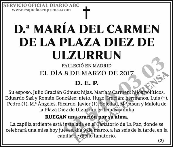 María del Carmen de la Plaza Diez de Ulzurrun